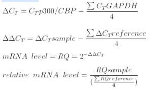 Some equations I wrote describing my RT-PCR calculations